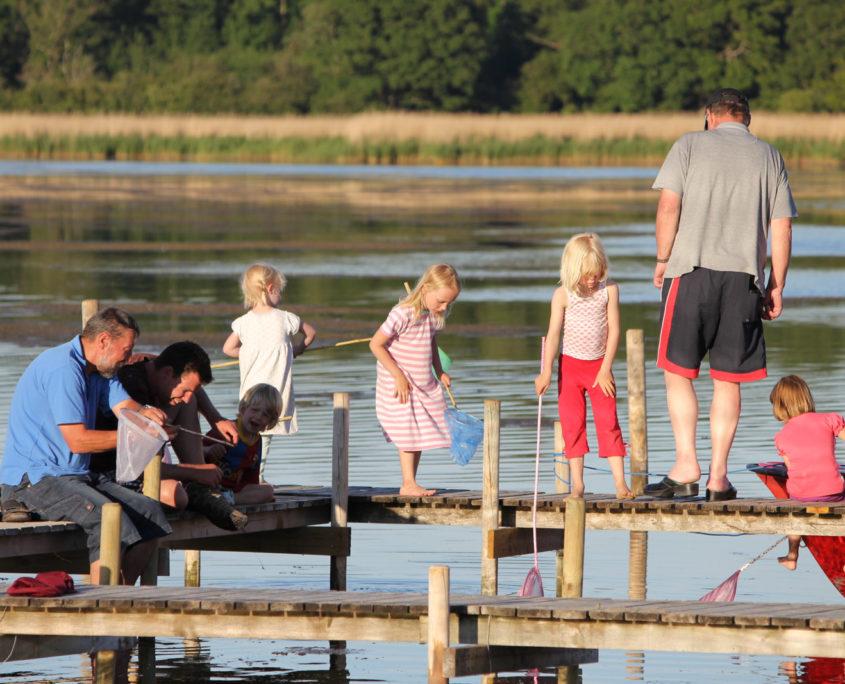 Krabbefiskeri på Sandager Næs Camping