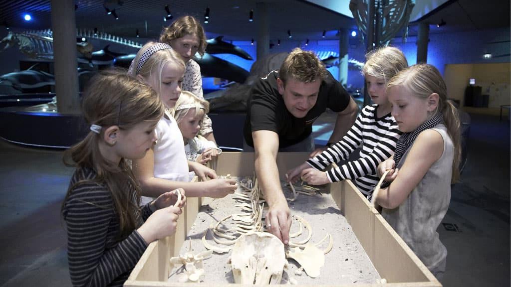 Børn kigger på dyreskellet